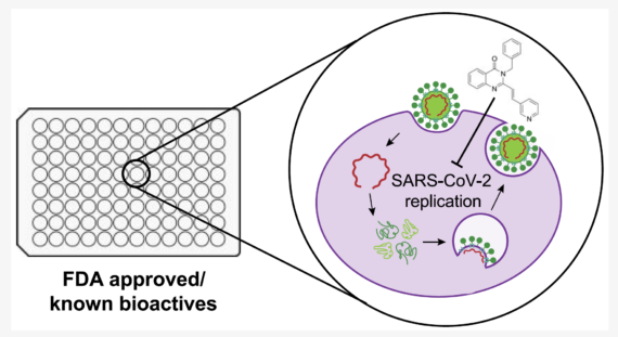Screening our FDA-Approved and Bioactive Compounds Library for Antiviral Activity against SARS-CoV‑2